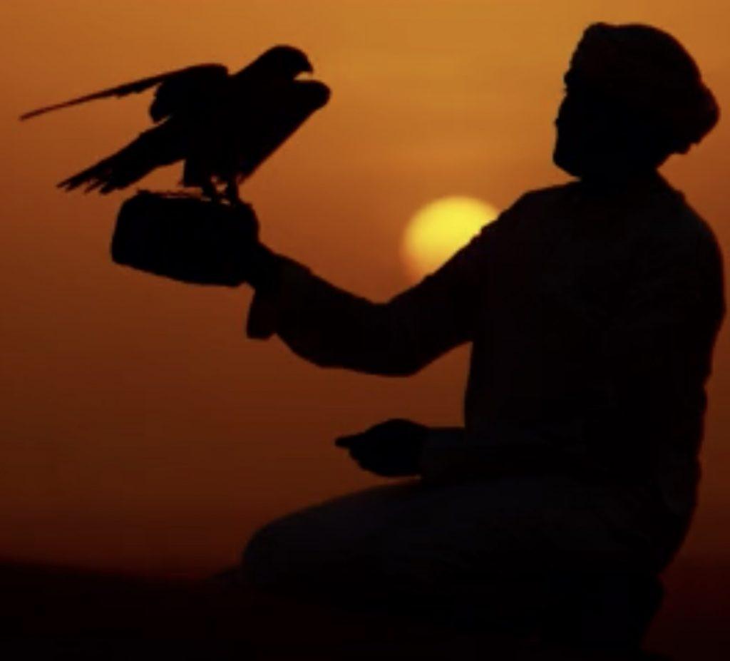 Desert Falcon Cover Image JPG