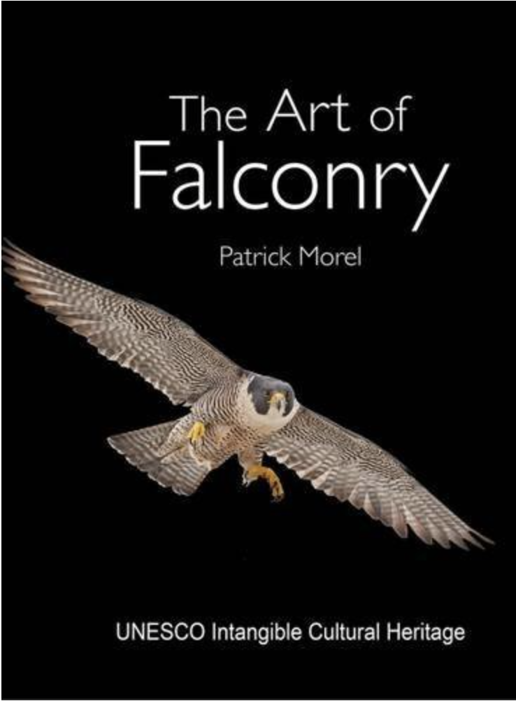 Desert Falcon Book giveaway The Art of Falconry